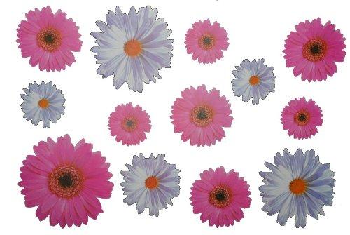 Wandtattoo Blumen Weiß : 13 tlg Set Wandtattoo XL Gerbera Margerite Blumen weiß Chrysantheme