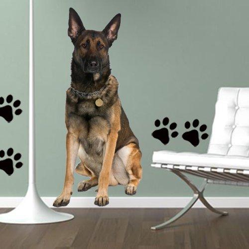 wandtattoo hund sch ferhund verschiedene hunderassen. Black Bedroom Furniture Sets. Home Design Ideas