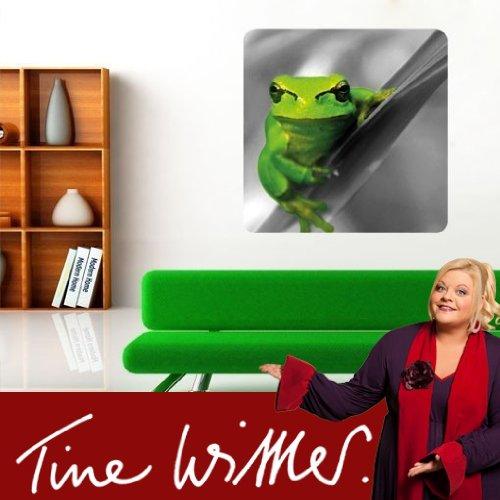klebefieber dw 723 wandbild gr ner frosch b x h 100cm x. Black Bedroom Furniture Sets. Home Design Ideas