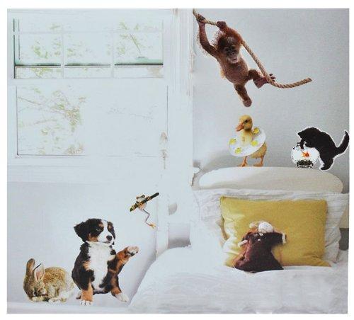 verschiedene wandtattoo mit frosch in der bersicht. Black Bedroom Furniture Sets. Home Design Ideas