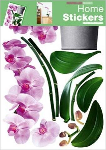 ... - Orchidee In Pink Wand-Tatoos Aufkleber Poster-Sticker (70 x 50 cm