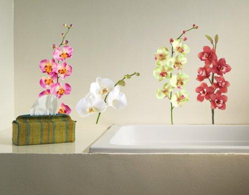 Selbstklebende Tapete Gras : Wandtattoo mehrfarbig No.183 Orchidee Set II, Gr??e:90x57cm