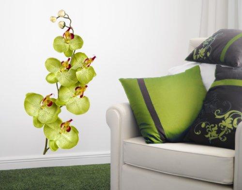 Wandtattoo orchidee wei verschiedene - Wandfarbe orchidee ...