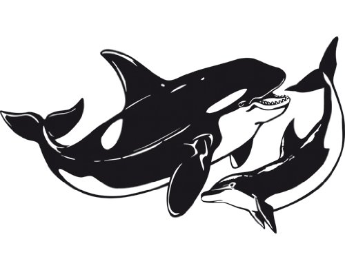 Wandtattoo delfin f r bad oder kinderzimmer - Wandsticker graffiti ...