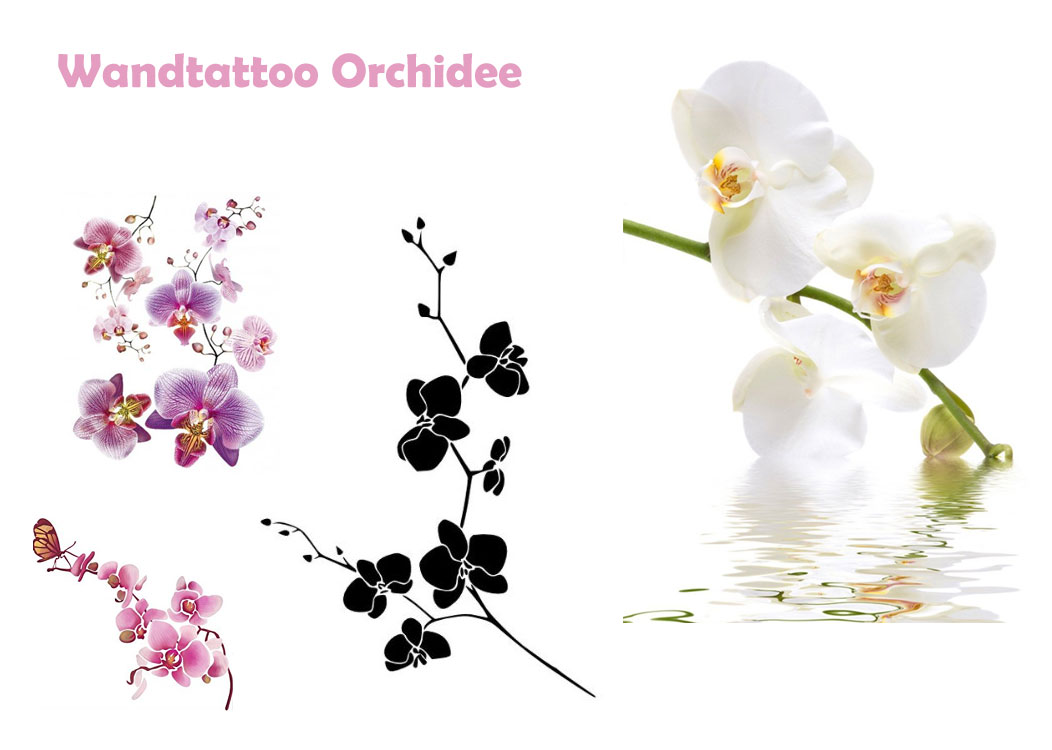 wandtattoo orchidee lila wei. Black Bedroom Furniture Sets. Home Design Ideas