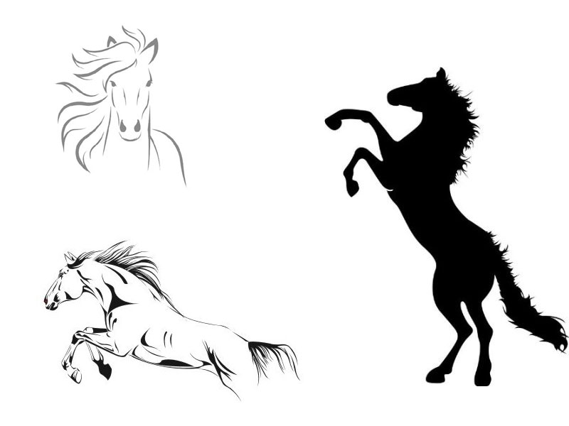 Wandtattoo pferd verschiedene motive for Jugendzimmer zeichnung